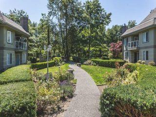 Photo 19: 209 12155 75A Avenue in Surrey: West Newton Condo for sale : MLS®# R2085068