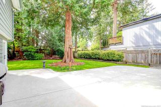 Photo 10: 5166 8A Avenue in Delta: Tsawwassen Central House for sale (Tsawwassen)  : MLS®# R2574199