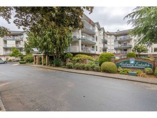 """Photo 1: 310 5360 205 Street in Langley: Langley City Condo for sale in """"PARKWAY ESTATES"""" : MLS®# R2515789"""