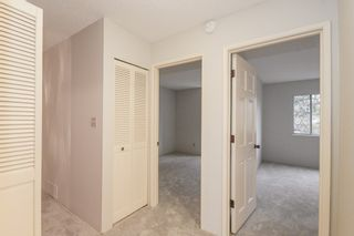 """Photo 22: 24 8111 SAUNDERS Road in Richmond: Saunders Townhouse for sale in """"OSTERLEY PARK"""" : MLS®# R2565559"""