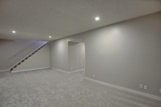 Photo 38: 7516 131A Avenue in Edmonton: Zone 02 House for sale : MLS®# E4254538