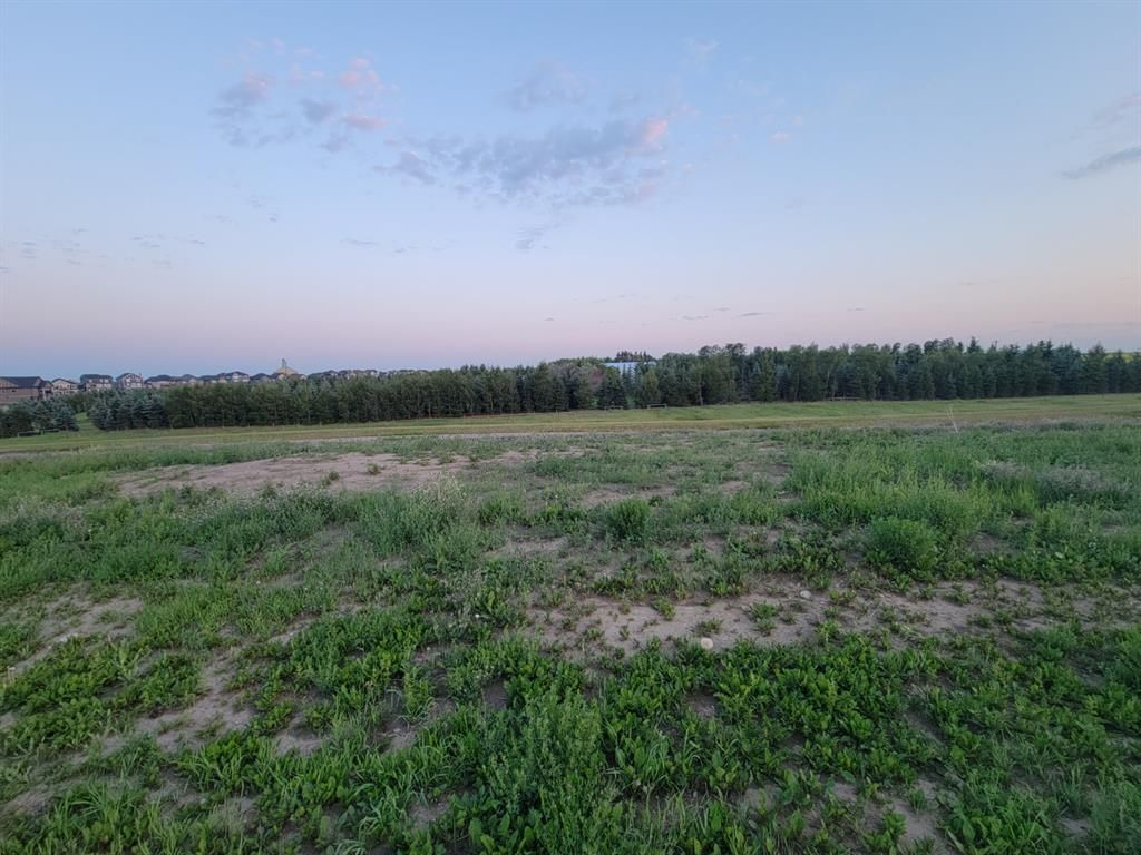 Main Photo: 247 MUIRFIELD Crescent: Lyalta Residential Land for sale : MLS®# A1128594