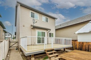 Photo 30: 253 Arbour Grove Close NW in Calgary: Arbour Lake Detached for sale : MLS®# A1128031