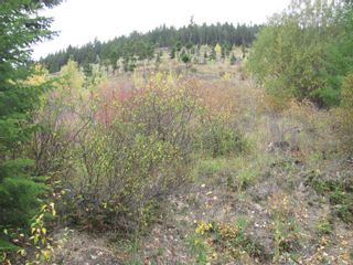 Photo 20: 80 Acres Creighton Valley Road, in Lumby: Vacant Land for sale : MLS®# 10239894