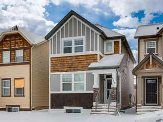 Photo 1: 107 Skyview Point Crescent NE in Calgary: Skyview Ranch Detached for sale : MLS®# A1048632