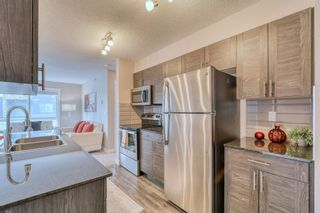 Photo 8: 316 20 Kincora Glen Park NW in Calgary: Kincora Apartment for sale : MLS®# A1144974