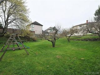 Photo 15: 3167 Carroll St in VICTORIA: Vi Burnside House for sale (Victoria)  : MLS®# 636095