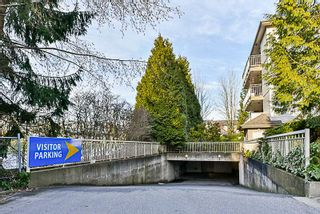 Photo 3: 217 15210 GUILDFORD DRIVE in Surrey: Guildford Condo for sale (North Surrey)  : MLS®# R2232822