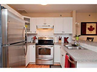 Photo 5: 1308 11 CHAPARRAL RIDGE Drive SE in Calgary: Chaparral Condo for sale : MLS®# C4055545