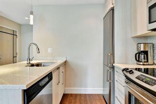 Photo 6: 301 1090 Johnson St in : Vi Downtown Condo for sale (Victoria)  : MLS®# 866462