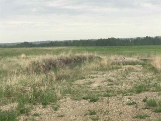 Photo 10: TWP 580 Rg Rd 240 Sturgeon County: Rural Sturgeon County Rural Land/Vacant Lot for sale : MLS®# E4248027