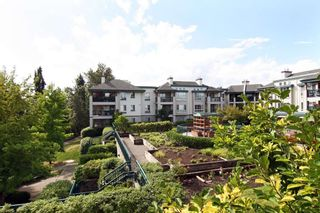 "Photo 15: 115 19528 FRASER Highway in Surrey: Cloverdale BC Condo for sale in ""The Fairmont"" (Cloverdale)  : MLS®# R2224596"