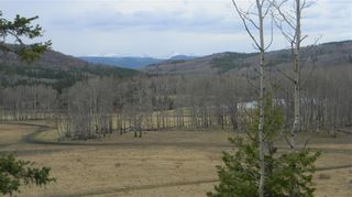 Photo 5: Corner of 178 Ave & 320 St W: Rural Foothills County Land for sale : MLS®# C4295343