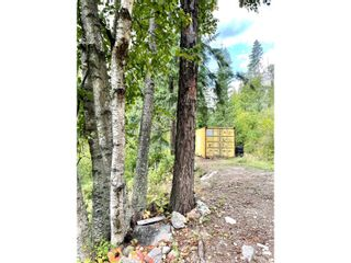 Photo 23: 1969 SANDY ROAD in Castlegar: Vacant Land for sale : MLS®# 2461033
