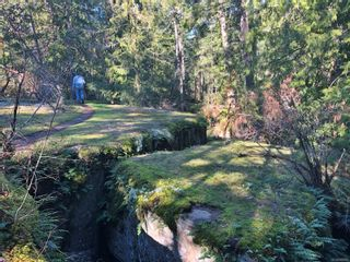 Photo 6: 0 Riverbend Rd in : Na Extension Unimproved Land for sale (Nanaimo)  : MLS®# 868867