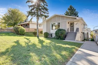 Photo 22: 2815 11 Avenue SE in Calgary: Albert Park/Radisson Heights Detached for sale : MLS®# A1149863