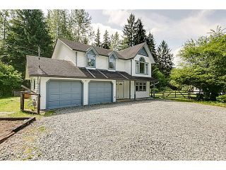 Photo 32: 25990 116TH Avenue in Maple Ridge: Websters Corners House for sale : MLS®# V1097441