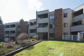 "Photo 1: 107 615 NORTH Road in Coquitlam: Coquitlam West Condo for sale in ""NORFOLK MANOR"" : MLS®# R2152631"