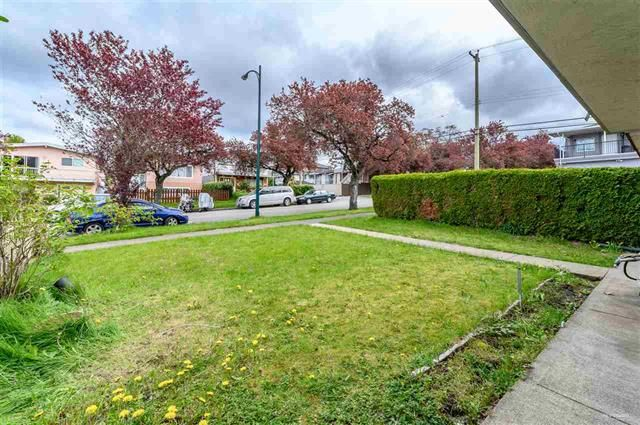 Photo 20: Photos: 668 E 55TH Avenue in VANCOUVER: South Vancouver House for sale (Vancouver East)  : MLS®# R2368177