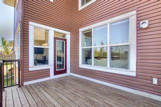 Photo 43: 287 AUBURN GLEN Drive SE in Calgary: Auburn Bay Detached for sale : MLS®# A1032601