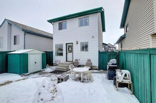 Photo 29: 204 Mt Aberdeen Circle SE in Calgary: McKenzie Lake Detached for sale : MLS®# A1063368