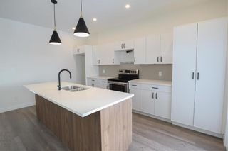 Photo 6: 138 Romance Lane in Winnipeg: Canterbury Park Residential for sale (3M)  : MLS®# 202104468