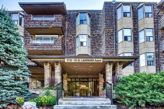 Main Photo: 215 3730 50 Street NW in Calgary: Varsity Apartment for sale : MLS®# A1079943