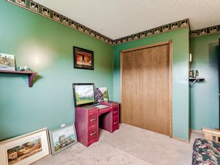 Photo 32: 216 MT COPPER Park SE in Calgary: McKenzie Lake Detached for sale : MLS®# A1025995