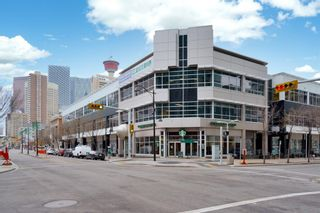Photo 25: 1909 135 13 Avenue SW in Calgary: Beltline Apartment for sale : MLS®# A1099213