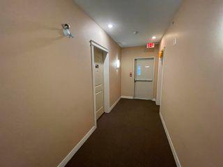 Photo 36: 401 11935 BURNETT Street in Maple Ridge: East Central Condo for sale : MLS®# R2625610