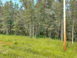 Photo 13: RGE RD 223 Twp Rd 594: Rural Thorhild County Rural Land/Vacant Lot for sale : MLS®# E4256609
