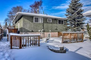 Photo 4: 1044 17A Street NE in Calgary: Mayland Heights Detached for sale : MLS®# A1070793
