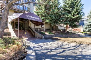 Photo 40: 301 1229 Cameron Avenue SW in Calgary: Lower Mount Royal Apartment for sale : MLS®# A1095141