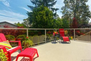 Photo 31: 4159 Tuxedo Dr in VICTORIA: SE Lake Hill House for sale (Saanich East)  : MLS®# 819260