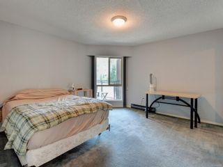 Photo 11:  in : Vi Fernwood Condo for sale (Victoria)  : MLS®# 883981