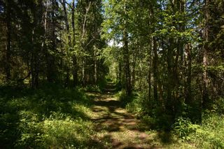 Photo 13: 18 Village West: Rural Wetaskiwin County Rural Land/Vacant Lot for sale : MLS®# E4251065