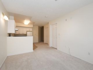 Photo 3: 302 1070 Southgate St in : Vi Fairfield West Condo for sale (Victoria)  : MLS®# 851621