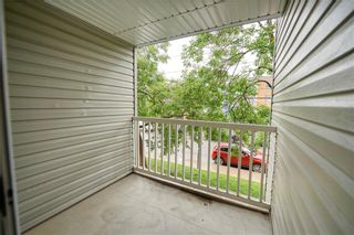 Photo 11: 215 2204 1 Street SW in Calgary: Mission Apartment for sale : MLS®# A1057983