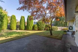 "Photo 16: 15659 ASTER Road in Surrey: King George Corridor House for sale in ""King George Cooridoor"" (South Surrey White Rock)  : MLS®# R2302599"