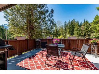 Photo 19: 50855 WINONA Road in Chilliwack: Chilliwack River Valley House for sale (Sardis)  : MLS®# R2570697