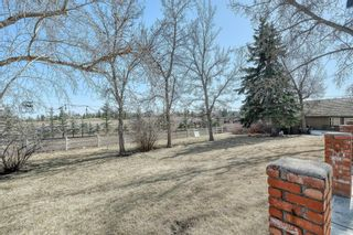 Photo 30: 116 Pine Creek Road: Rural Foothills County Detached for sale : MLS®# A1091741