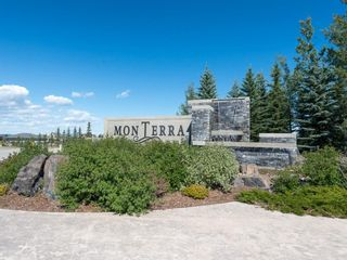Photo 48: 64 Montenaro Bay: Cochrane Lake Detached for sale : MLS®# A1030296
