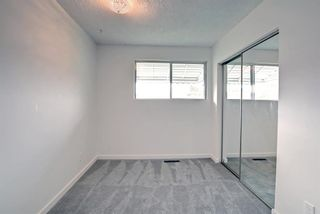 Photo 24: 1124 Northmount Drive NW in Calgary: Brentwood Detached for sale : MLS®# A1144480