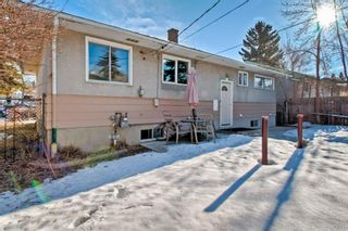 Photo 28: 105 Langton Drive SW in Calgary: North Glenmore Park Detached for sale : MLS®# A1066568