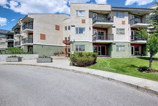 Photo 6: 202 69 Springborough Court SW in Calgary: Springbank Hill Apartment for sale : MLS®# A1123193