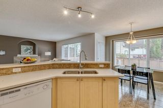 Photo 9: 18 Copperfield Crescent SE in Calgary: Copperfield Detached for sale : MLS®# A1141643