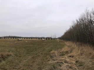 Photo 3: Twp Rd 583 Rge Rd 271: Rural Westlock County Rural Land/Vacant Lot for sale : MLS®# E4218422