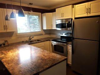 "Photo 3: 2969 264A Street in Langley: Aldergrove Langley House for sale in ""Aldergrove"" : MLS®# R2572607"