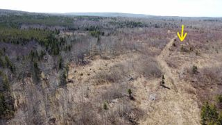 Photo 7: 8532 Trunk 4 Highway in Telford: 108-Rural Pictou County Vacant Land for sale (Northern Region)  : MLS®# 202108300