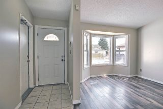 Photo 20: 15712 81 Street in Edmonton: Zone 28 House for sale : MLS®# E4236940